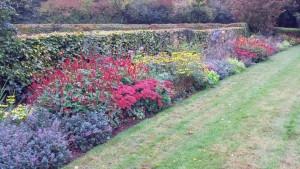 Speldhurst Long Border Planting Design