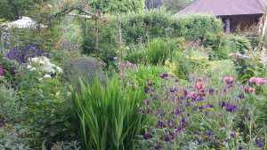 Sussex Country Garden Planting Design